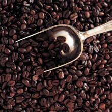 异域风情的咖啡豆进口报关你需要行业中的专家