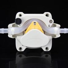 杰恒603Z-饮料果汁可乐-定量输送-蠕动泵图片
