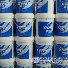 塞伯斯防水涂料施工工艺XYPEX水泥基渗透材料订购图片