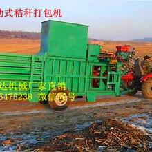 鸿运WYD-40型移动卧式打包机卧式稻草牧草打包机