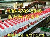 555ml玻璃瓶瓶装水设备矿泉生产线