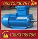 YBK2-250M-8-30電機