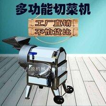 多功能不锈钢切菜机果蔬加工切割机械设备TJ-312图片