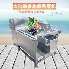全?#36828;?#21333;槽洗菜机不锈钢果蔬洗菜机清洗蔬菜机械设备TJ-70图片