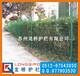 苏州圈地围栏护栏网/苏州铁丝网围栏网/浸塑绿色护栏网价格低