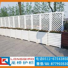 扬州苏北新农村透视围墙新农村围墙围栏龙桥厂家直销图片