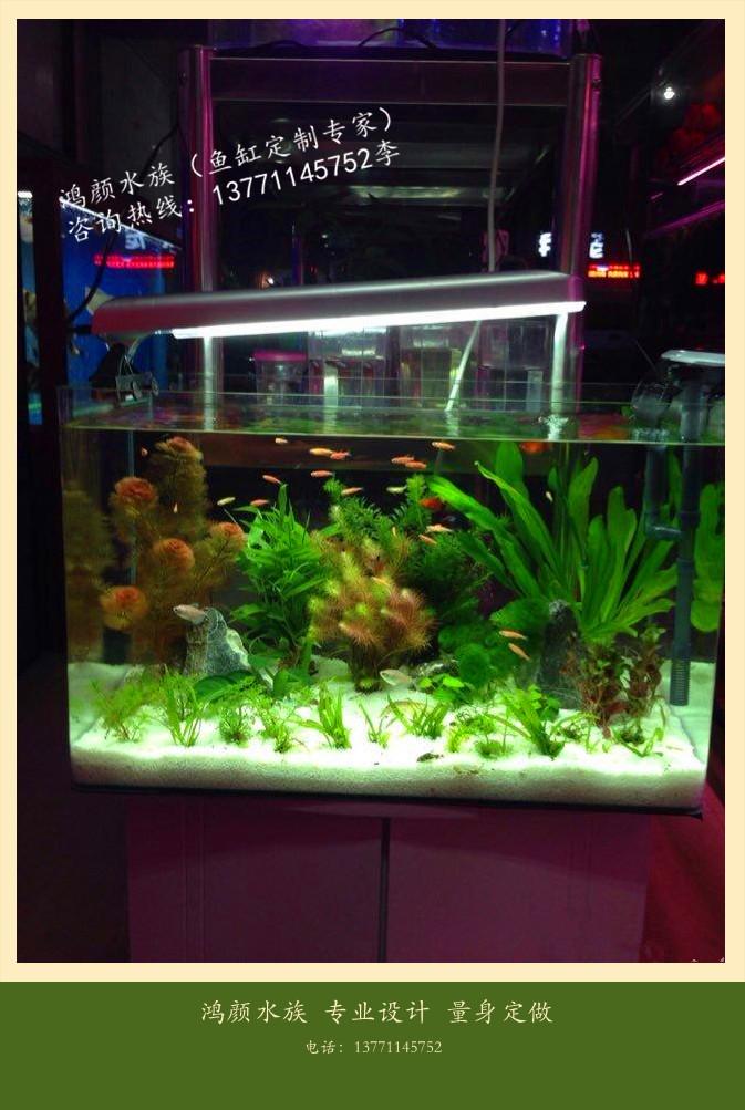 专业上门清洗鱼缸鱼缸造景鱼缸安装鱼缸搬运