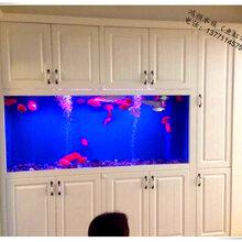 苏州鸿颜苏州鱼缸价格亚克力鱼缸性价比最高图片