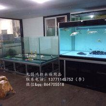 无锡鱼缸安装上门维护清洗鱼缸海水鱼养护包月包年图片