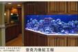 徐州大型鱼缸定做厂家定制大型有机玻璃鱼缸亚克力透明水族鱼缸生态鱼缸