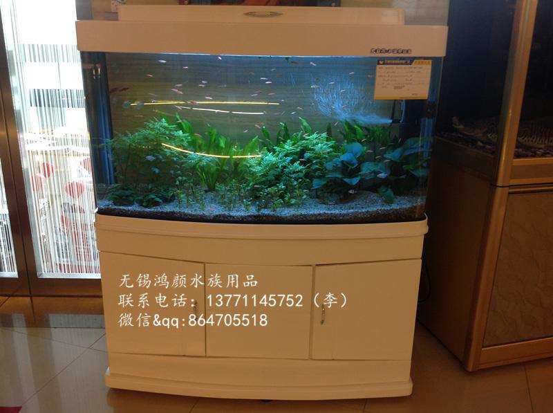 鱼缸怎么画步骤图片