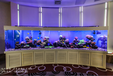 上海大型缸定做豪華大型水族箱嵌墻式魚缸工程