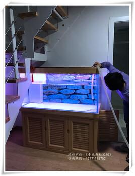 鱼缸消毒水草缸种植鱼病治疗鱼提供鱼缸布景鱼缸维