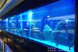 浙江杭州大型魚缸定做大型水族魚缸亞克力水族魚缸水族館魚缸