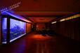 宜兴鱼缸高端鱼缸定做酒店大型水族箱