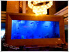 江阴定制海水鱼缸客厅鱼缸公司鱼缸会所鱼缸