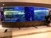 杭州大型魚缸亞克力水族箱制作