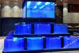 无锡酒店鱼缸