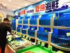 无锡超市鱼缸