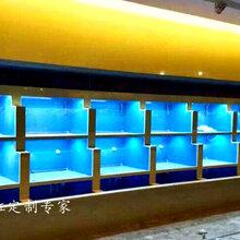 南京定做鱼缸定做海鲜池