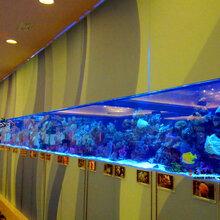 湖北大型鱼缸厂家