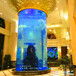 上海超大鱼缸定做