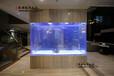 上海亞克力魚生產廠家