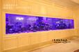 上海大型鱼缸生产厂家