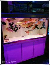 南京观赏鱼缸定做