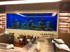 嘉兴鱼缸定做生态鱼缸设计