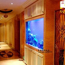 设计鱼缸定做鱼缸保养鱼缸清洗鱼缸