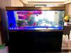 無錫上門維修魚缸安裝魚缸觀賞魚配送魚缸清洗布景