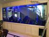 宜興魚缸定制大型水族工程設計廠家直銷