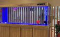 無錫觀賞魚缸定制魚缸安裝維修上門清洗服務
