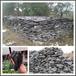 新疆园林石假山石庭院假山造景石材英石假山石