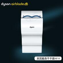 戴森DYSON高速喷气式干手器\\AB14双面干手机图片