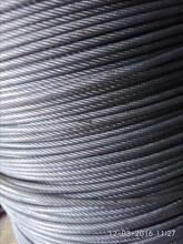 富川葡萄架钢丝绳厂家批发大棚钢丝绳镀塑胶钢丝绳