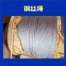 供应各型号镀塑胶钢丝绳葡萄架钢丝绳晾衣钢丝绳