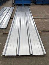 供应YX38-300-900型彩钢瓦腾威集团彩钢压型板图片