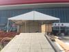 商丘室外活动篷房搭建棚内布置配饰全套租