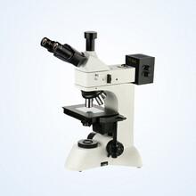 MJ33明暗场金相显微镜