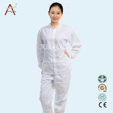 白色洁净服防静电分体服无尘服无菌工作服一件起批