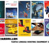 烟台龙海起重工具,拥有近30个国际高端品牌