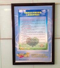 河南加工生產鋁合金制度框廠家訂購廣告海報畫框圖片
