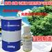 乙二胺油酸酯(EDO-86)厂家批发