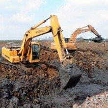 珠海市210型水陆挖掘机出租服务推荐
