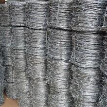 张家口哪里有镀锌刺铁线生产厂家