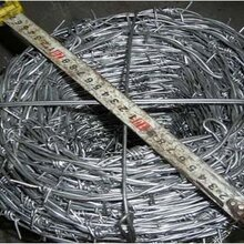 果园种植带刺铁丝网围栏多钱一米?
