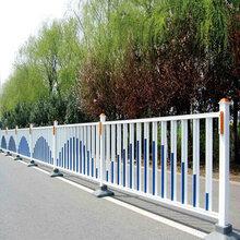 道路护栏网报价/市政道路护栏网厂/广州道路护栏网