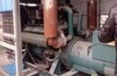 上海二手发电机组回收多少钱一台浦东柴油发电机组回收